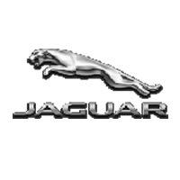 guarda-chuvas-ribak-jaguar